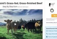 從美國眾籌牛肉,看眾籌創業新玩法
