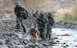 實拍解放軍戰士和武警戰士共同巡邏執勤,這樣的組合誰還敢惹