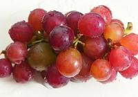 常吃葡萄有哪些好處?