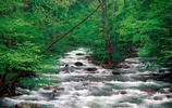 真實風景:美國田納西州風景