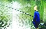 大蒜蚯蚓釣魚已經過時了,現在流行用它釣魚,要是釣不到魚來找我