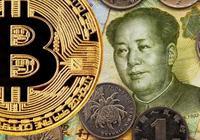 中國主要交易所推出C2C交易平臺
