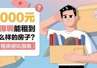 畢業季租房陷阱多,深圳租房如何才能避免被套路?(附租房指南)