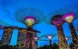 攝影圖集:袖珍國家新加坡,自然與城市的融合,東西方文化的交織
