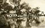 【旅遊】老舍時代的大明湖:四面荷花三面柳,一城山色半城湖