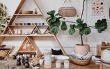 KunPlant|分享10張植物與家居搭配美圖