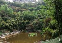 重慶這個公園建在一塊巨石上,石頭上面是小區