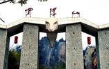 廣東5A景觀羅浮山
