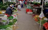 早市海鮮市場,大蝦23元一斤扇貝5元,蝦爬子45元一斤成稀罕物