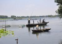 山東滕州市水產中心主任王式田導視察市2016年度現代漁業平臺漁技推廣項目