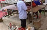 3歲小狗成了老人得力助手,看家護院又上山打獵還能拉車買菜買米