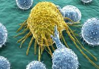 癌前病變=癌症?