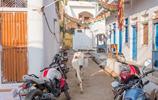 印度鄉村實拍:不少二層樓房,還刷著漂亮顏色,不輸中國一般農村