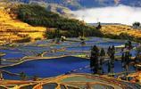 雲南元陽哈尼族古村,一個有著如畫般梯田美景的地方