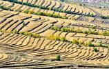 草沿天路秋草黃,彩色的山谷,不同的曲線之美