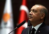 """土耳其總統埃爾多安:""""世紀工程""""明年將招標"""