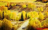 秋天的自然原生態,美的無法形容,只有走進它才能感受它的美