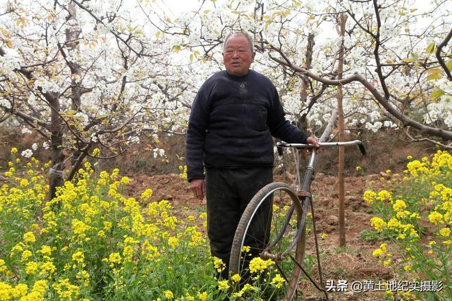 山西68歲農民大爺預防霜凍有妙招,看看他有啥好辦法