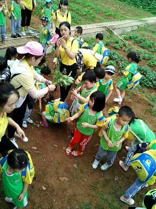 深圳農家樂一日遊:歡樂親子一天遊