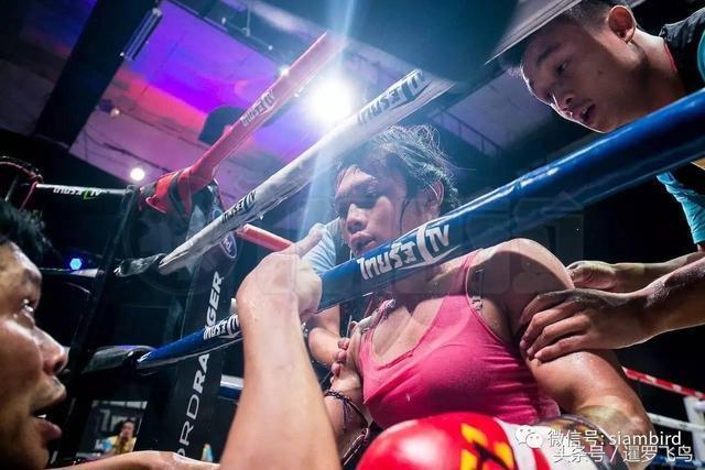 鐵拳玫瑰!泰拳場上來自變性人的暴擊
