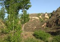 忻州八景之陰山吃石