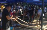 最新出爐!來自全國最大海南黃花梨原材料交易市場的實拍報道