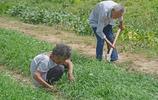 江蘇農村90歲老人一家樸實生活10張圖,家的感覺,樸素,但有力量