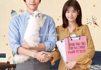 沒想到這個韓劇也這麼戳心,超治癒的,評分漲到9.1,你看了嗎?
