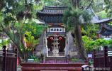 此公園距今2000多年曆史,門票只需10元,是雲南最值票價景區之一