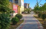 實拍安徽淮北農村,8張圖,新村遍栽花草宛如花園,城裡人都羨慕