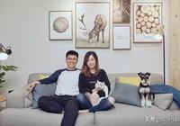 上海86㎡頂層小複式,他改成貓狗可以撒歡的家,伴木而棲!