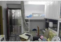 香港僅40平方米的豪宅,住著一家4口,臥室、客廳和餐廳共用