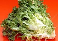 苦苣有什麼營養價值?怎麼吃最健康?