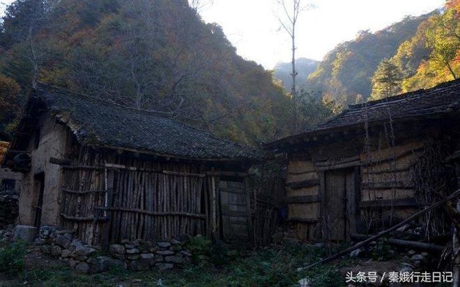 秦嶺秦州榮光村丨院子雜草叢生,房子搖搖欲墜,主人不知去了哪裡