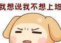 """春節開工!王俊凱心情""""由陰轉晴"""",楊洋、鍾漢良笑容滿面"""