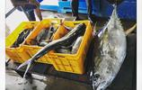 實拍斯里蘭卡漁民:慵懶悠長的日子,不急不躁的小生活