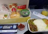 中游客去印度,坐飛機時看見飛機餐,就後悔了!網友:慢慢品嚐吧