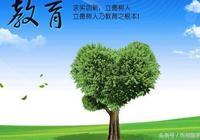 忻州隨手拍幫打聽:市政協組織省市政協委員視察調研我市教育工作
