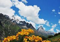 夏季旅遊攻略:四姑娘山