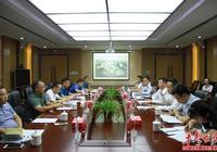 唐浩然、劉浪調研華耀城項目建設