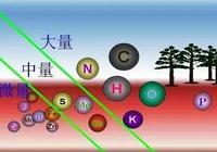 中微量元素對作物產量和品質的巨大影響