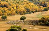 壩上草原的美