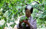 農村75歲老太太4年為亡夫還債12萬,再還8千就清了,她靠啥還債?