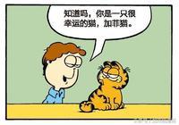 加菲貓漫畫|我的前半生也就這樣了,後半生照此複製粘貼一下就好