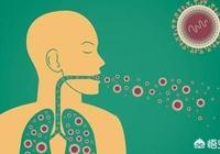 什麼是肺結核?