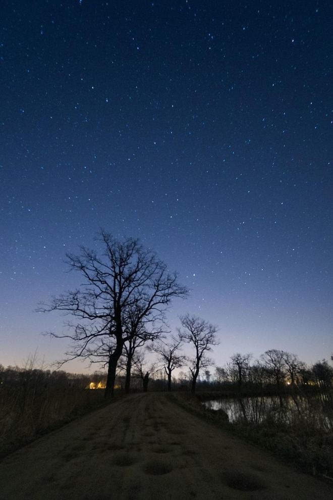 為了提高自己的攝影水平,我一整年每週至少拍攝一次自然照片