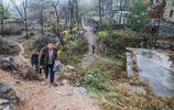 山村古樹伴石屋,石獅守家園,咋有恁多旅遊資源,村民翹首盼客來