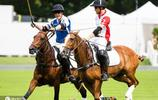 威廉哈里兄弟倆同框參加馬球賽 邊笑邊騎馬打破兄弟不和傳聞
