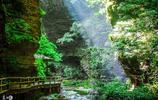 伊川鶴鳴峽