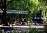 """國內旅遊:南京""""烏龍潭""""——南京的小西湖"""